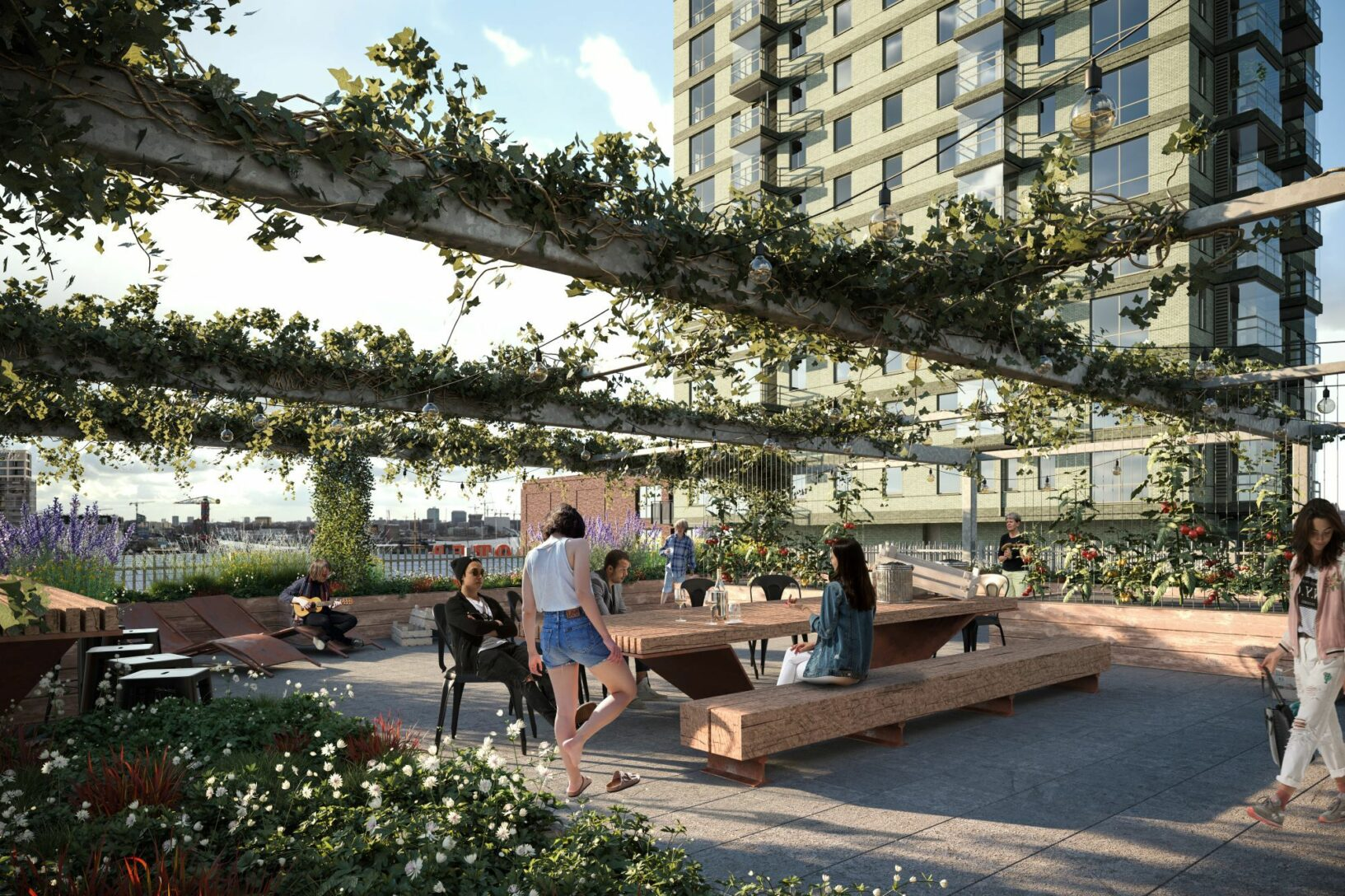 An impression of the collective roof garden